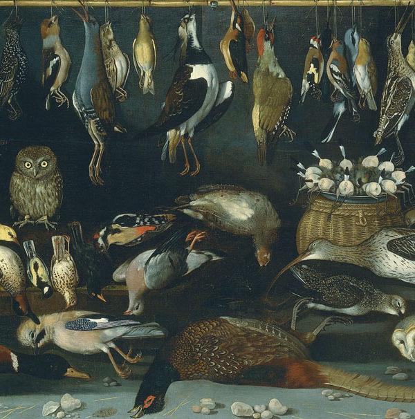 Still life with birds