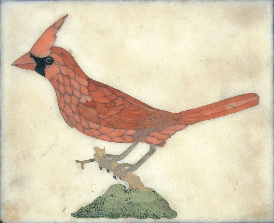 Un uccello: Cardinale rosso
